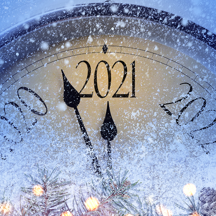Общий прогноз на 2021 год